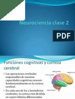 Neurociencia clase 2