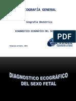 004 Diagnostico Ecografico Del Sexo Fetal