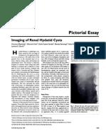 Imaging of Renalhydatid Cysts
