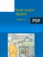 Ch. 10 Youth Justice I