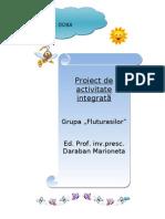 0_proiect_de_grad_i