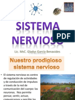 sistema_nervioso_abril_2012