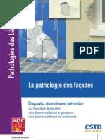 Extr_Guide_pathologie_façades