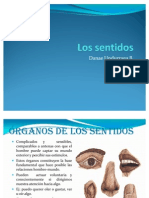 ÓRGANOS DE LOS SENTIDOS