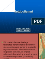 metabolismul