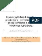 gestione nutrizionale della bovina da latte in fase di transizione
