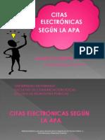 citaselectrnicassegunlaapa-091224000710-phpapp01