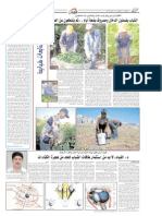 Alrai Report