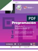 Guía profesional. PROGRAMACIÓN 12. CECyTEH 2012, Gobierno Hidalgo