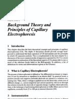 Theory of Electrophoresis