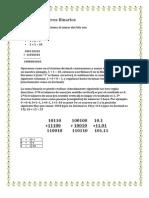 sumadenmerosbinarios-090506173528-phpapp02
