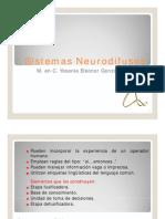 229_Sistemas Neurodifusos (1)