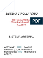 Sist.circulatorio-ramos Da Aa.aorta