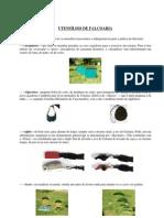 Artigo - Utens€¦ílios de Falcoaria