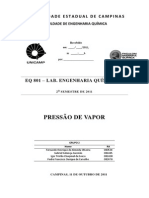 Relatório - Pressão de Vapor - FEQ EQ801 - UNICAMP - Grupo 2