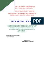 45157847-LICENTA-FUNDATA (1)