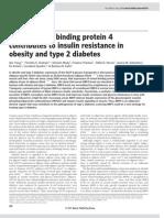 Insulin Resistance in Obesity Diabetes