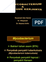 Anti TB Respi