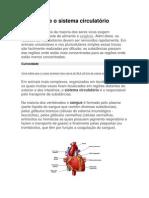 O coração e o sistema circulatório