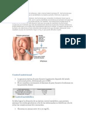 obesidad y diabetes fisiopatología embarazo