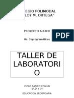 Taller Lab Oratorio