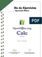 ejer_calc_bas[1]