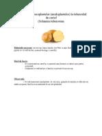 Evidentierea Celulelor La Cartof