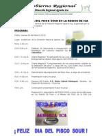 Programa Del Pisco Sour 2012