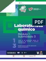 Guía Formativa. LABORATORISTA QUÍMICO 13. Gobierno Hidalgo, CECyTEH 2012