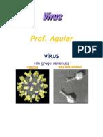 O príon não é vírus e sim uma proteína presente na membrana do neurônico que apresenta problemas estruturais