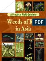 Weeds of Rice in Asia