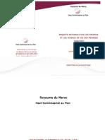 RAPPORT Niveau de Vie 2006-2007 (1)