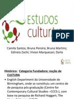 estudos_culturais