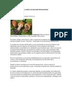 El Cacao Ecuatoriano Cautiva Al Mercado Internacional