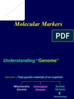 Molecular Markers for Molecular in Crop Improvmen