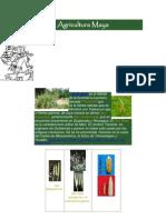Agricultura Maya Maqueta