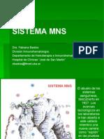 Sistema Mns Ppt