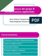 Estrepto grupo B (1)
