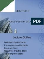 CHAPTER8 Public Debts