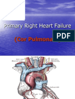 2007 Primary Right Heart Failure Cor Pulmonale