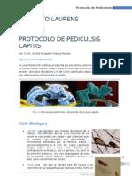 Protocolo de pediculosis