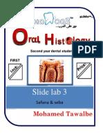 Oral histology-Lab-3