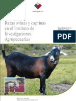 Razas Ovinas y Caprinas en Chile