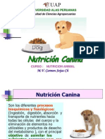 11 Sem. Nutricion Canina