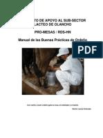 Manual Buenas Practicas Ordeno