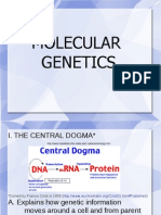 Molecular Genetic Ppt