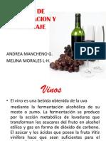 exposicion vinos INVESTIGACION
