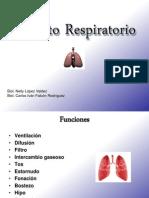 Aparato_Respiratorio-22_09