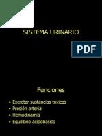 SISTEMA_URINARIO_1