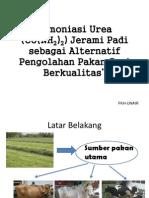 Amoniasi Urea (CO(NH2)2) Jerami Padi